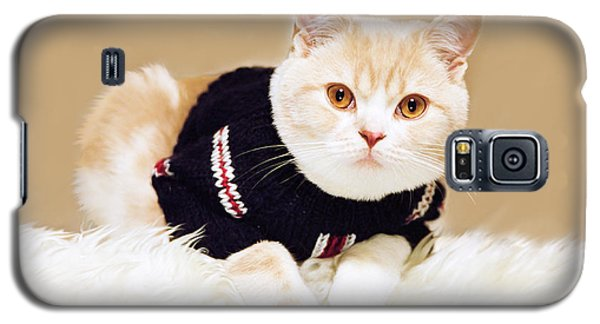 The Cat Wears Sweater Galaxy S5 Case by Aiolos Greek Collections