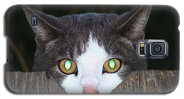 Galaxy S5 Case featuring the photograph The Cat's Meow by Wendy McKennon