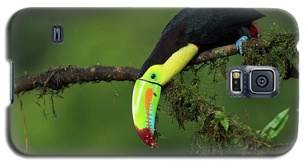 The Colors Of Costa Rica Galaxy S5 Case