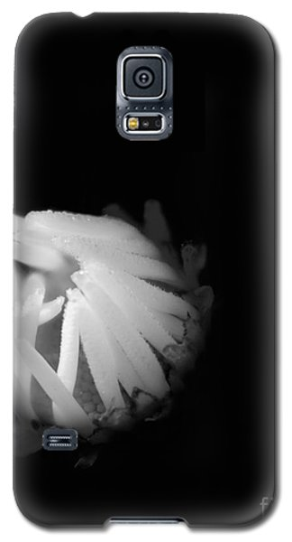 The Coming Light Galaxy S5 Case
