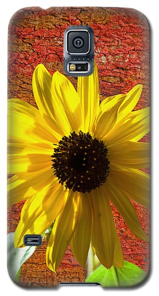 The Contrast Of Time Galaxy S5 Case by Sandi OReilly