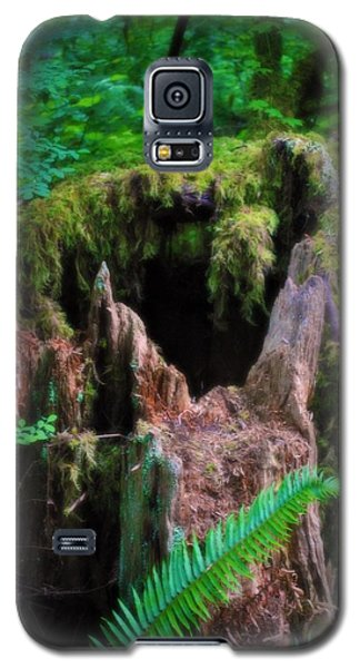 Galaxy S5 Case featuring the photograph The Creature's Home by Amanda Eberly-Kudamik