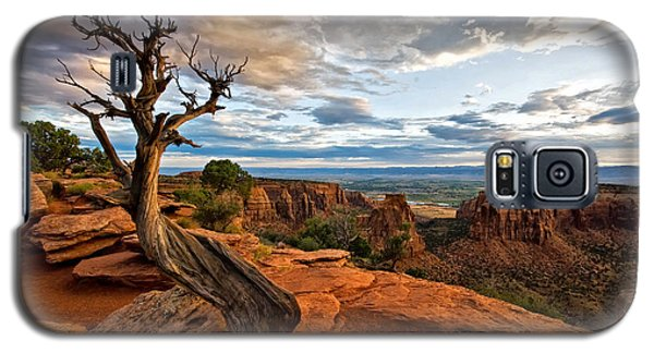 Galaxy S5 Case featuring the photograph The Crooked Old Tree by Ronda Kimbrow