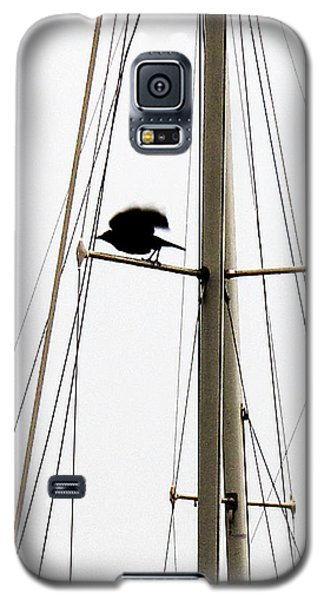 The Crow Leaving The Absent Crows Nest Galaxy S5 Case by John King