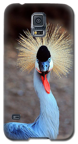 The Crowned Crane Galaxy S5 Case by Trina  Ansel
