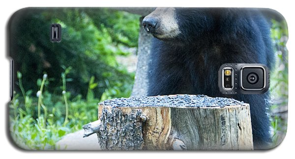 The Cub That Came For Lunch 2 Galaxy S5 Case