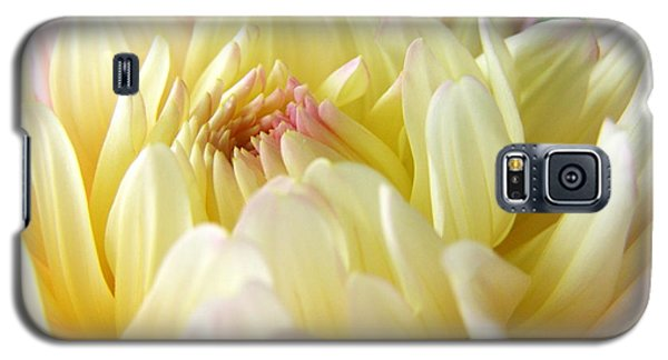 Galaxy S5 Case featuring the photograph Yellow Dahlia by Margie Amberge