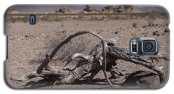 The Desert Floor Galaxy S5 Case
