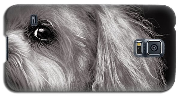 The Dog Next Door Galaxy S5 Case