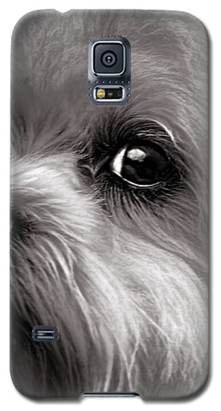 The Dog Next Door Galaxy S5 Case