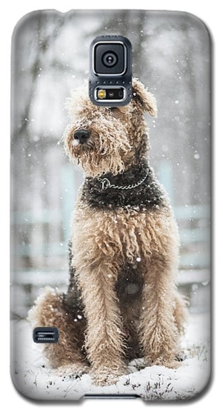 The Dog Under The Snowfall Galaxy S5 Case