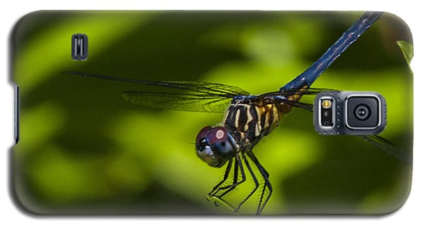 Galaxy S5 Case featuring the photograph The Dragon Fly by Terry Cosgrave