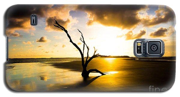 The Driftwood Tree Folly Beach Galaxy S5 Case