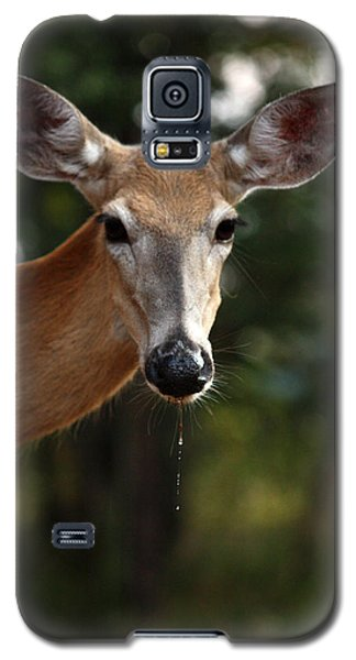 Galaxy S5 Case featuring the photograph The Drip by Rita Kay Adams
