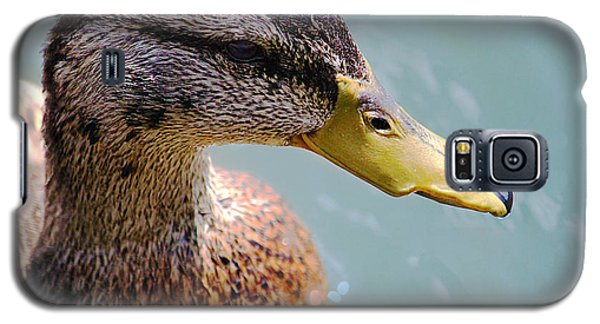 Galaxy S5 Case featuring the photograph The Duck by Milena Ilieva