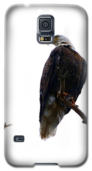 The Eagle And The Hummingbird Galaxy S5 Case