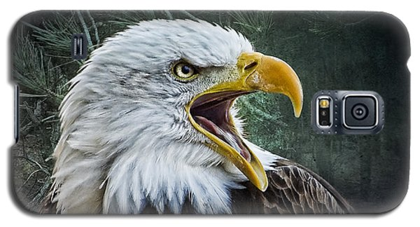 Galaxy S5 Case featuring the photograph The Eagle's Cry by Brian Tarr