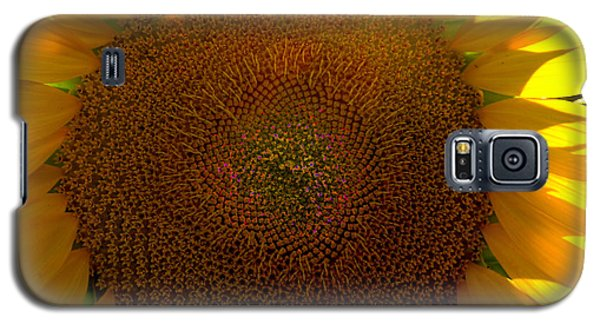 Galaxy S5 Case featuring the photograph The Eye 3 by Lyle Crump