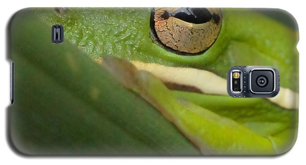 Galaxy S5 Case featuring the photograph The Eye Has It Squared by TK Goforth
