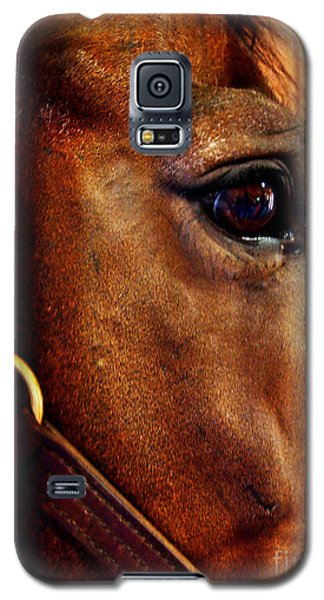 The Eye Of A Champion Da Hoss Galaxy S5 Case by Deborah Fay