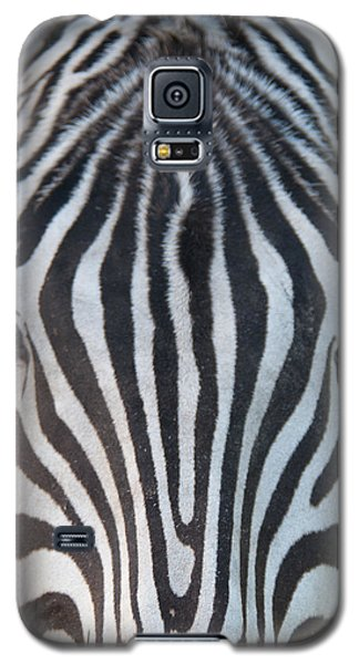 Galaxy S5 Case featuring the photograph The Eyes Have It by John Black