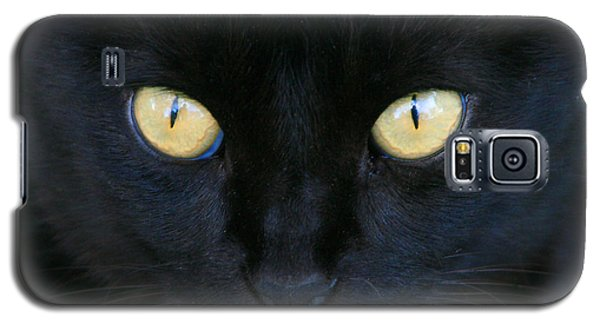 The Eyes Have It Galaxy S5 Case by Mariarosa Rockefeller