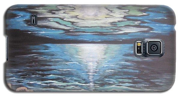The Fading Sun Galaxy S5 Case by Cheryl Pettigrew