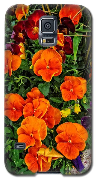 Fall Pansies Galaxy S5 Case