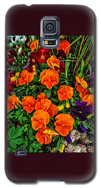The Fall Pansies Galaxy S5 Case