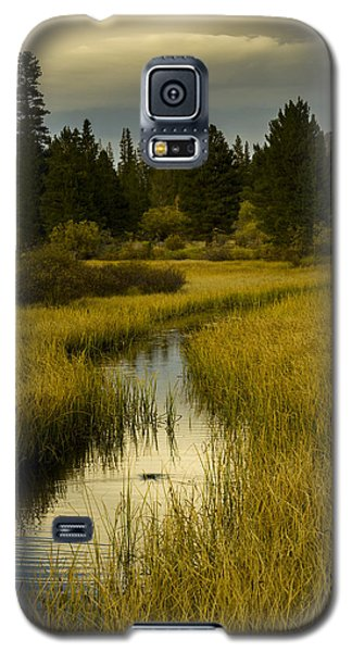 The Fish Are Biting At Rock Creek Galaxy S5 Case