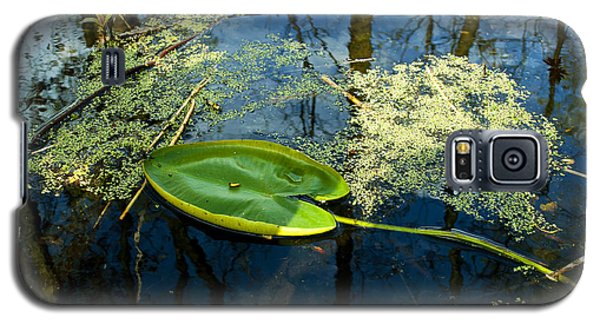 Galaxy S5 Case featuring the photograph The Floating Leaf Of A Water Lily by Verana Stark