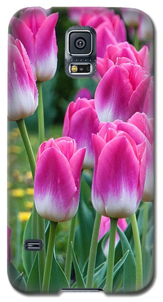 Galaxy S5 Case featuring the photograph The Flower Magnificence by Sergey Simanovsky