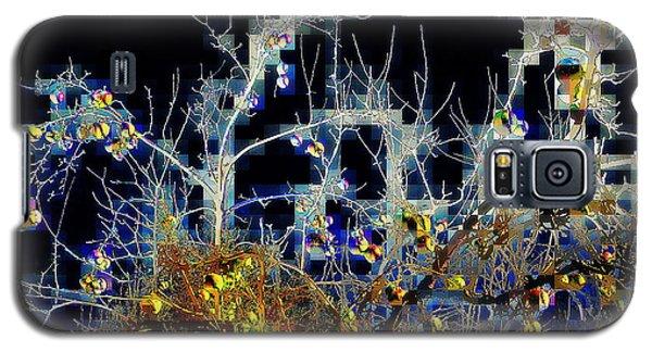 Galaxy S5 Case featuring the photograph The Forbidden Fruit by Jodie Marie Anne Richardson Traugott          aka jm-ART