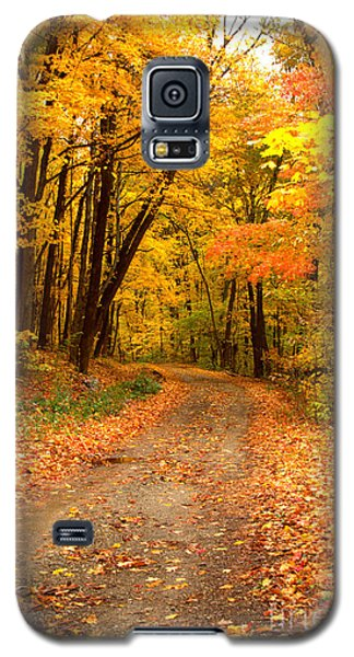 The Forest Road Galaxy S5 Case by Jim McCain
