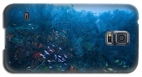 The Forest Galaxy S5 Case