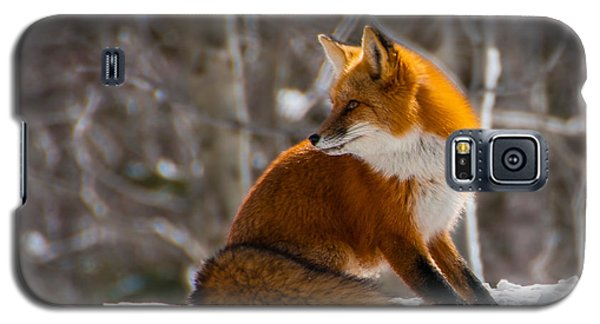The Fox 2 Galaxy S5 Case