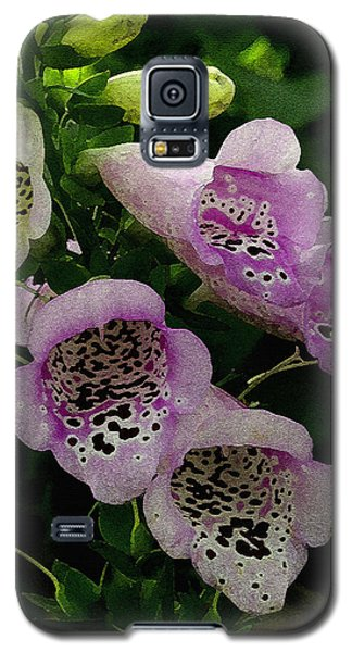Galaxy S5 Case featuring the photograph The Foxglove by James C Thomas