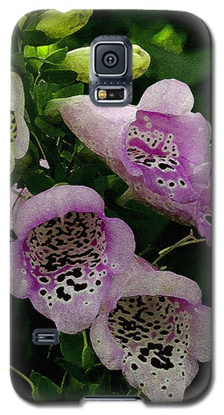 The Foxglove Galaxy S5 Case by James C Thomas
