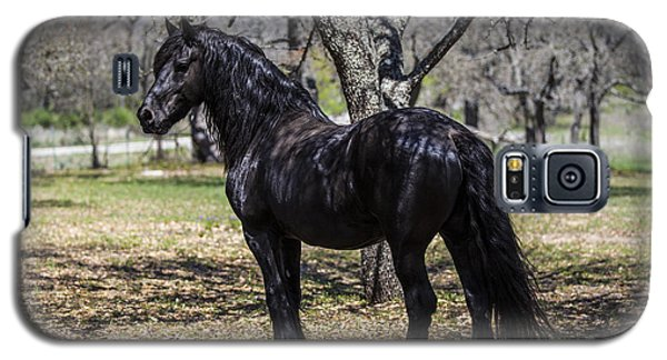 The Friesian Stallion Eros Galaxy S5 Case
