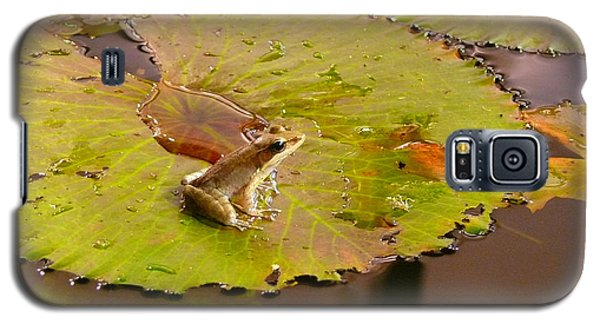 Galaxy S5 Case featuring the photograph The Frog by Evelyn Tambour