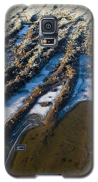 The Frozen Earth Galaxy S5 Case by Liz  Alderdice