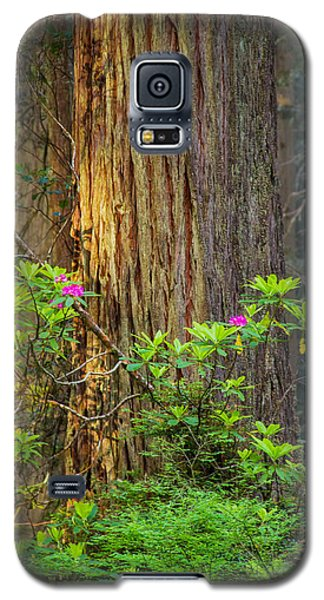 The Giant And The Flower Galaxy S5 Case