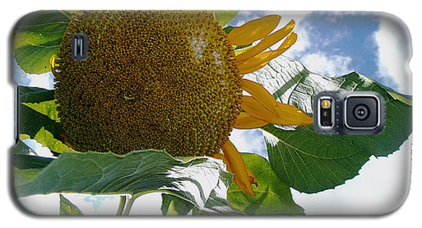 Galaxy S5 Case featuring the photograph The Gigantic Sunflower by Verana Stark