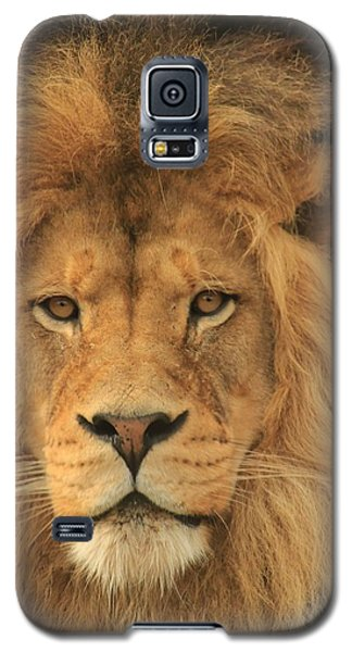 The Glory Of A King Galaxy S5 Case by Laddie Halupa