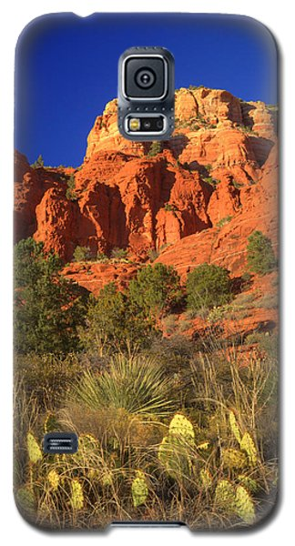 The Glory Of The Desert Red Rocks 1 Galaxy S5 Case