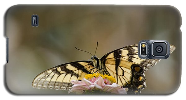 The Glow Through Nature Stain Glass Galaxy S5 Case by Donna Brown