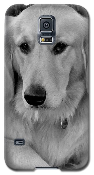 The Golden Retriever Galaxy S5 Case