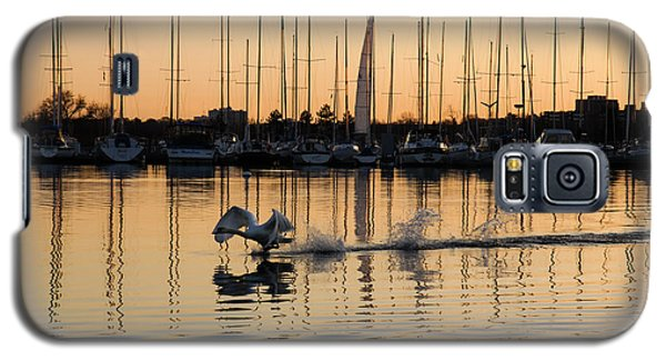 The Golden Takeoff - Swan Sunset And Yachts At A Marina In Toronto Canada Galaxy S5 Case