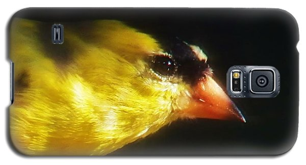 Galaxy S5 Case featuring the photograph The Goldfinch by Judy Via-Wolff