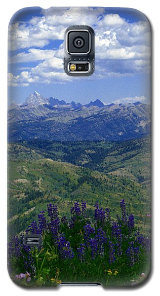 Galaxy S5 Case featuring the photograph The Grand And Lupines by Raymond Salani III